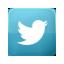 Visit on Twitter